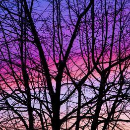 canvastaulu-tammikuun-taivas-vari-main